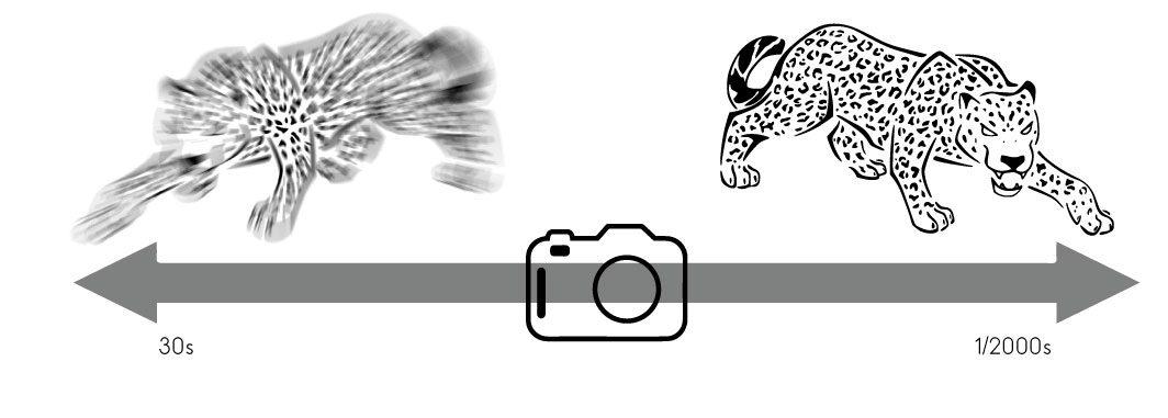 La vitesse, composante du triangle de l'exposition en photo